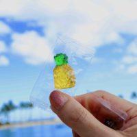 ハワイのパイナップルグミ