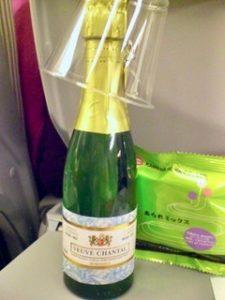 My in-flight meal-3